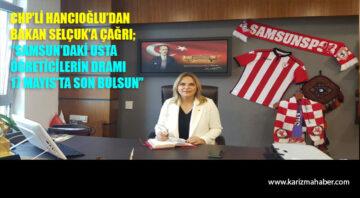 CHP'li Hancıoğlu'dan, Bakan Selçuk'a çağrı: