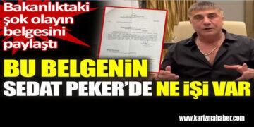 Bu belgenin Sedat Peker'de ne işi var.
