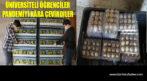 ÜNİVERSİTELİ GENÇLER PANDEMİYİ FIRSATA ÇEVİRDİ