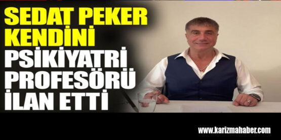Sedat Peker kendini psikiyatri profesörü ilan etti