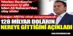 Ali Babacan 128 milyar doların nereye gittiğini açıkladı