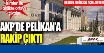 AK Parti'de Pelikan'a rakip çıktı: İsimleriyle birlikte açıklandı