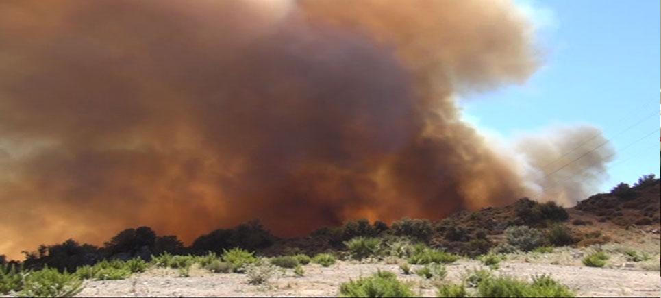 Bodrum'da yangın kontrol altına alındı