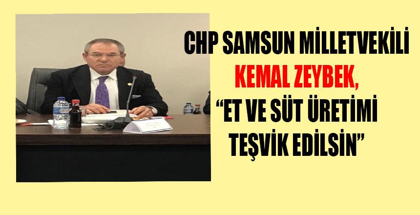 CHP Samsun Milletvekili Kemal Zeybek'in Basın açıklaması