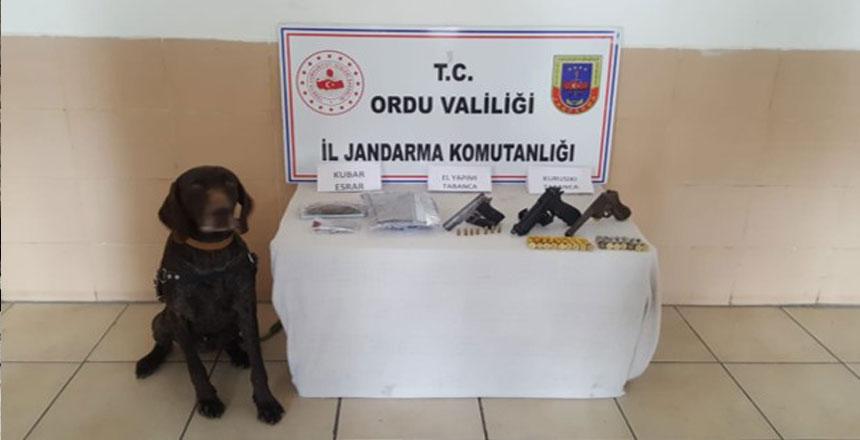 Ordu Valiliği, İl Jandarma Komutanlığı Basın Açıklaması