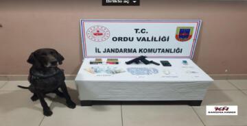 Ordu Valiliği, İl Jandarma Kom. Basın Açıklaması