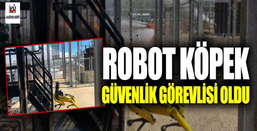 Robot köpek, güvenlik görevlisi oldu