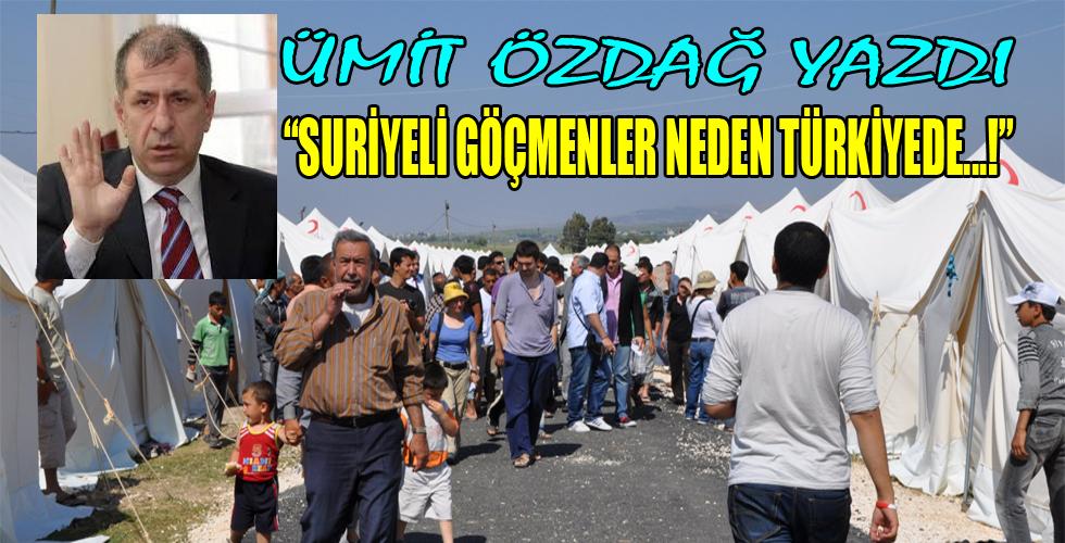 Suriyeli sığınmacılar neden Türkiye'de?
