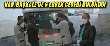 Van'da 6 erkek cesedi bulundu