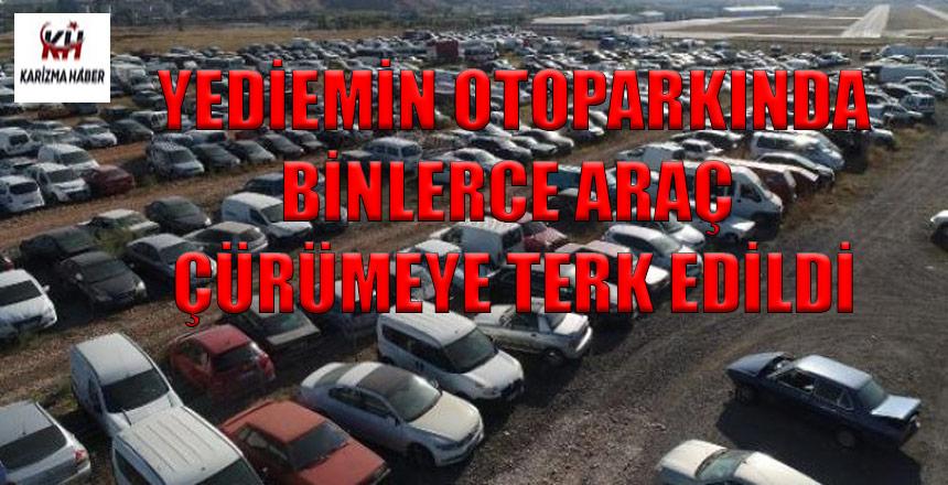 Yüzlerce araç çürümeye terk edildi